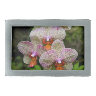 Hebilla del cinturón de la orquídea hebillas cinturon