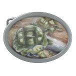 Hebilla del cinturón de los amigos de la tortuga hebilla cinturon oval