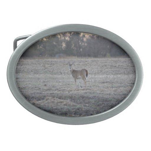 Hebilla del cinturón de los ciervos hebilla cinturon oval
