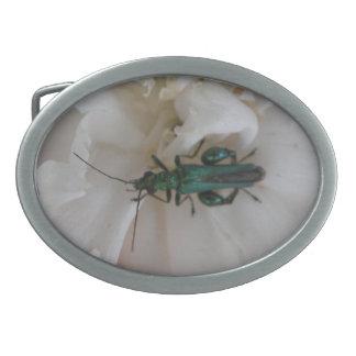 Hebilla del cinturón del escarabajo de la flor hebillas cinturon ovales