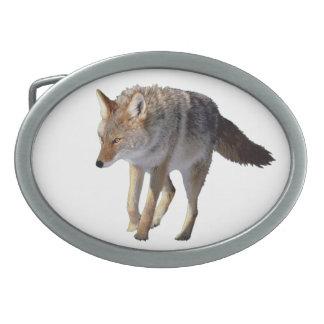 """""""Hebilla del cinturón del estaño del coyote """" Hebillas De Cinturón Ovales"""