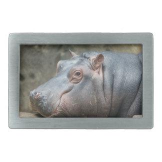 Hebilla del cinturón del Hippopotamus Hebilla Cinturon Rectangular