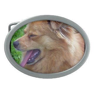 Hebilla del cinturón del perro chino de perro chin hebillas cinturón