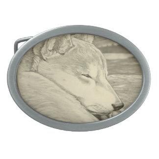 Hebilla del cinturón del perro el dormir de la heb hebilla cinturón oval