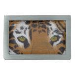 Hebilla del cinturón del tigre hebilla de cinturon rectangular
