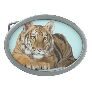 Hebilla del cinturón del tigre hebilla cinturón oval