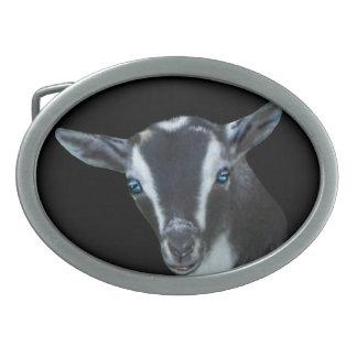 Hebilla del cinturón enana nigeriana de la cabra d hebillas de cinturon ovales