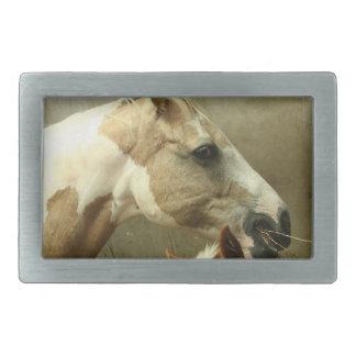 Hebilla del cinturón gris del caballo de Eventing Hebilla Cinturon
