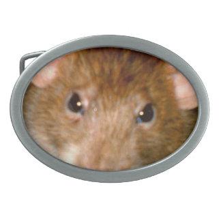 Hebilla del cinturón linda de la cara de la rata hebillas cinturón ovales