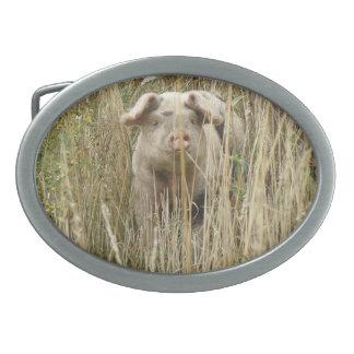 Hebilla del cinturón manchada linda del cerdo hebillas de cinturon
