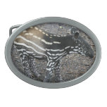 hebilla del cinturón - modificada para requisitos  hebillas de cinturon ovales
