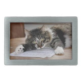 Hebilla del cinturón musical del gato hebilla cinturón rectangular