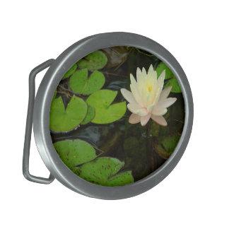 Hebilla del cinturón rosada de la flor del lirio hebilla cinturón oval