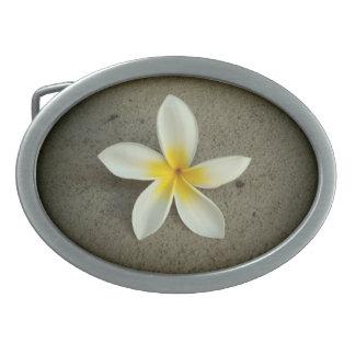 Hebilla del cinturón simple de la flor del hebillas de cinturon ovales