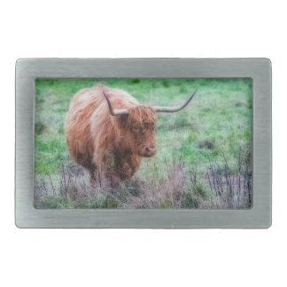 Hebilla escocesa de la fotografía de la vaca de la hebilla cinturon rectangular