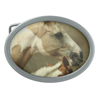 Hebilla gris del caballo de Eventing Hebilla De Cinturón