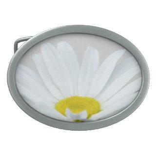 Hebilla y regalos de la margarita del Wildflower d Hebilla Cinturón Oval