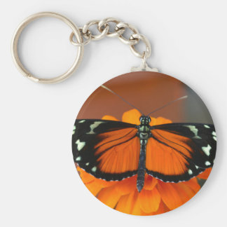 Hecale Longwing Butterfly Keychains