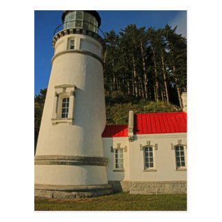 Heceta Head Restored Postcard