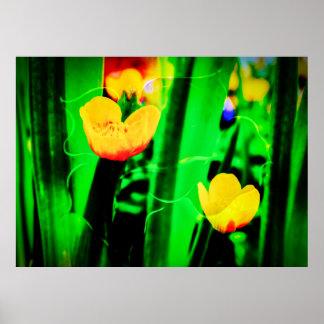 Hechizo de flor póster