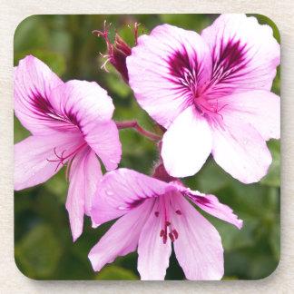 Hechizos rosas de primavera posavasos de bebida