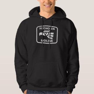 Hecho en Moline personalizado custom personalized Hooded Pullover
