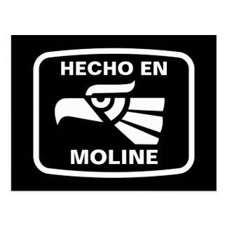 Hecho en Moline personalizado custom personalized Postcard