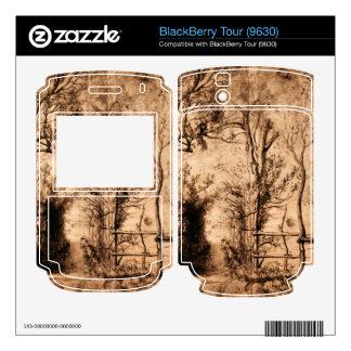 Heckenpfad by Paul Rubens BlackBerry Tour Skins