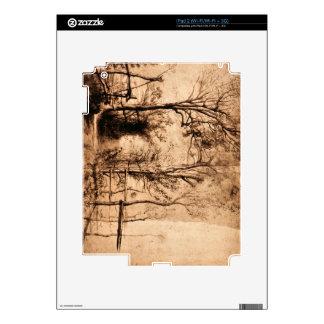 Heckenpfad by Paul Rubens Skins For The iPad 2