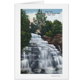 Hector Falls near Seneca Lake View Card