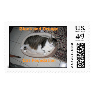 Hector the teacup cat stamps