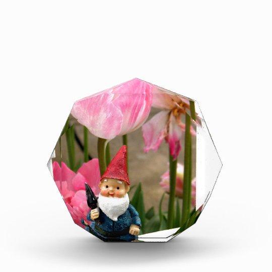 Hectors Garden Acrylic Award