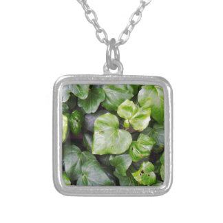 Hedera Silver Plated Necklace