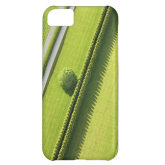 Hedge in The Hamptons Cover For iPhone 5C