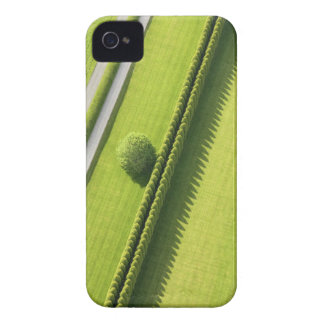 Hedge in The Hamptons iPhone 4 Cover