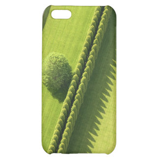 Hedge in The Hamptons iPhone 5C Case
