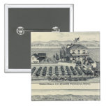 Hedge Row Vineyard, Fresno 2 Inch Square Button