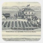 Hedge Row Vineyard, Fresno Square Sticker