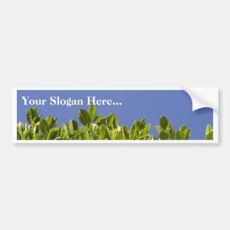 Hedge Tree Bumper Sticker