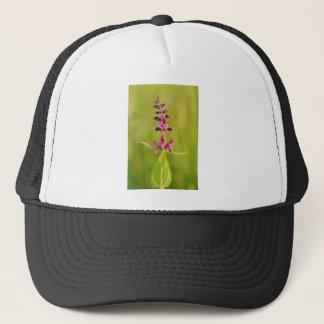 Hedge Woundwort Stachys Sylvatica Trucker Hat