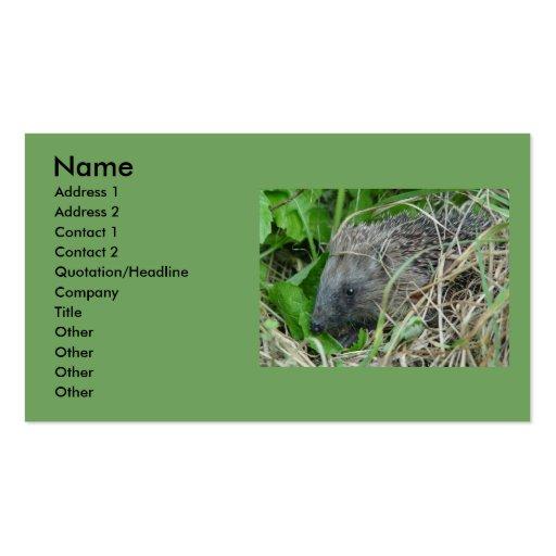 Hedgehog #1 business card templates