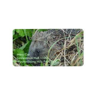 Hedgehog #1 label