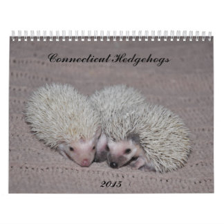 Hedgehog babies calendar 2015