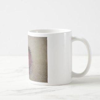 Hedgehog Baby Hands Up Coffee Mug