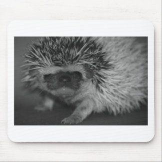 Hedgehog Baby in Black and White Mouse Pad
