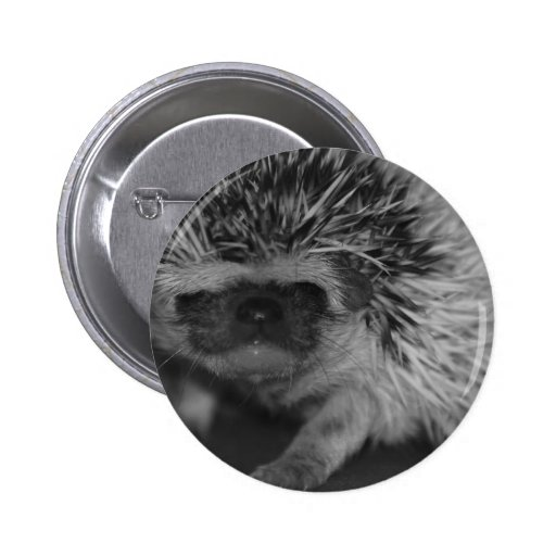 Hedgehog Baby in Black and White Pinback Button