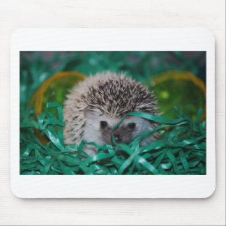 Hedgehog Baby in Easter Grass Mouse Pad