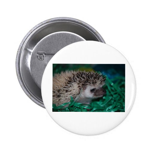 Hedgehog Baby in Easter Grass Pinback Buttons