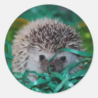 Hedgehog Baby in Easter Grass Round Sticker