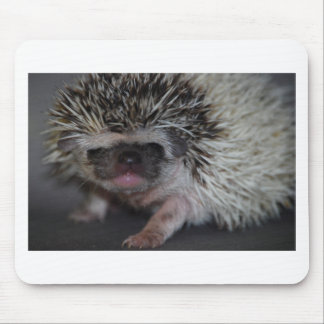 Hedgehog Baby Mouse Pad